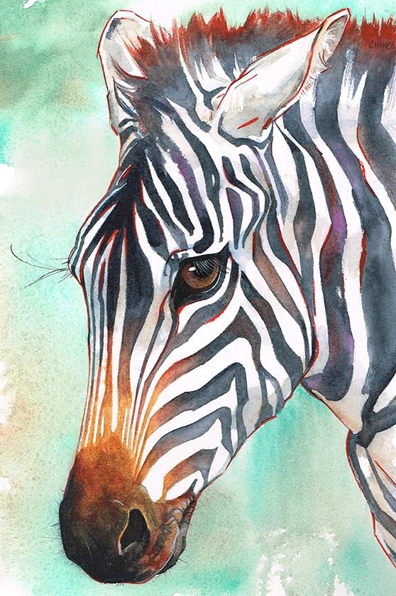 """""""No. 52 Zebra"""" original fine art by Annabel Chance"""