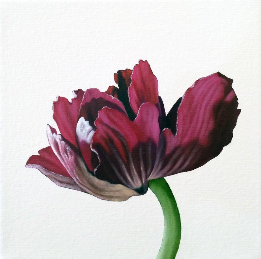"""Anemone III"" original fine art by Jelaine Faunce"