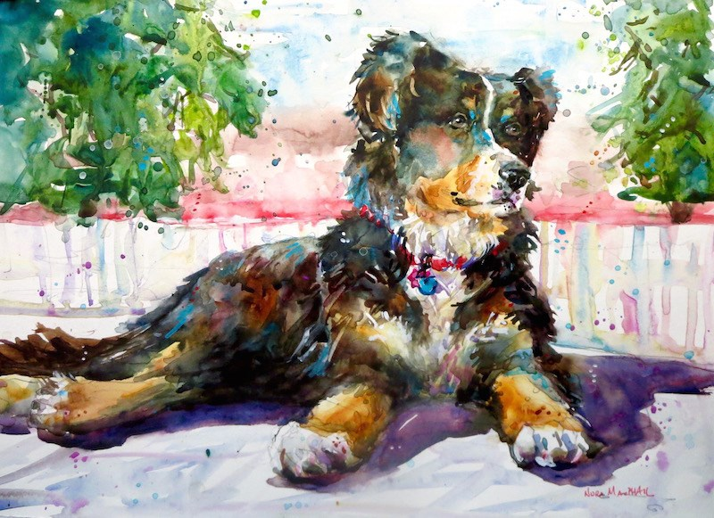 """""""kindhearted"""" original fine art by Nora MacPhail"""