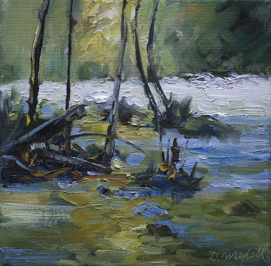 """River Rapids"" original fine art by Denise Maxwell"
