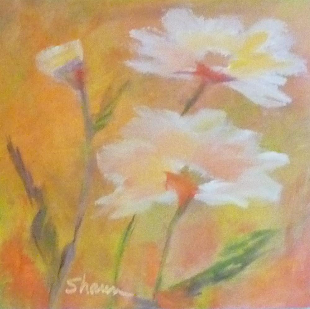 """""""Daisy May"""" original fine art by Shawn Deitch"""
