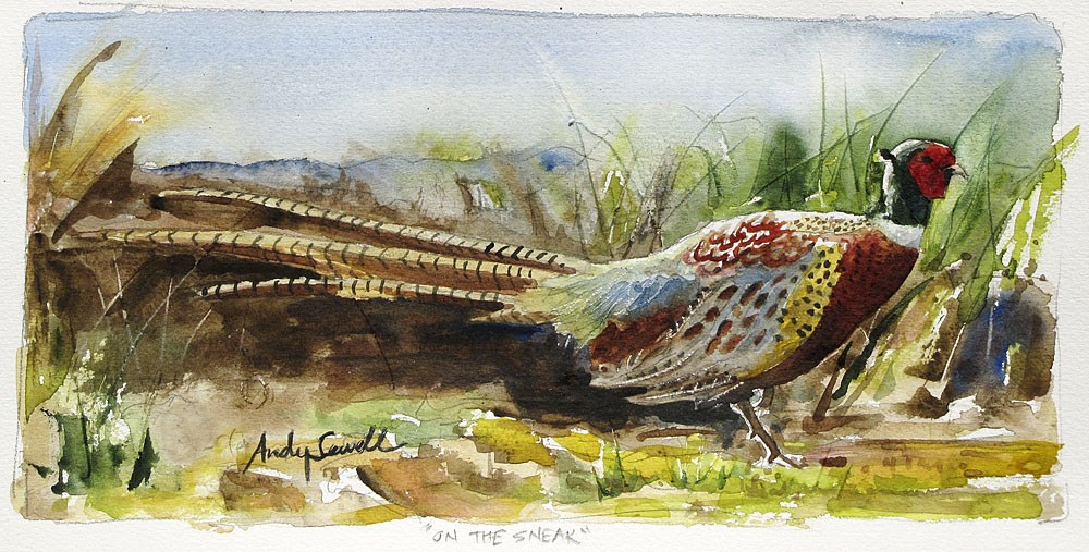 """P is for Pheasant"" original fine art by Andy Sewell"