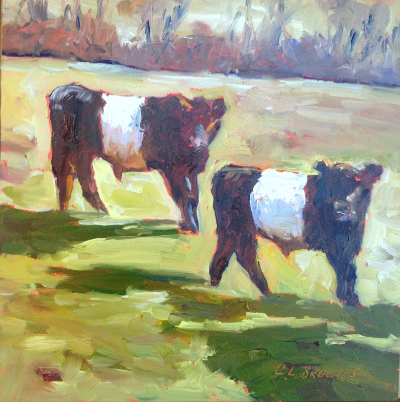"""Belted Galloway Calves, Day 6"" original fine art by Claudia L Brookes"