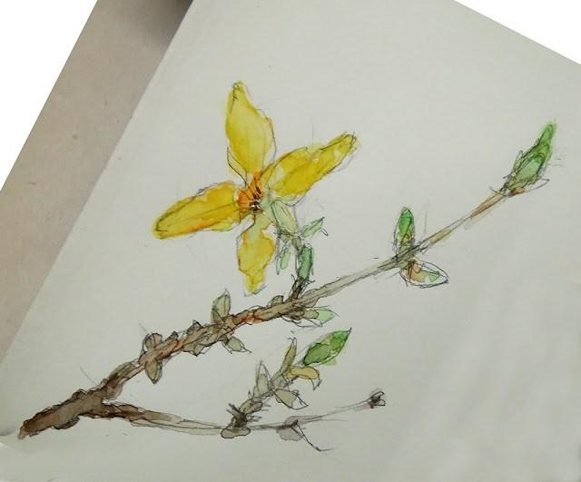 """""""Sketch 6"""" original fine art by Mitsuru Cope"""