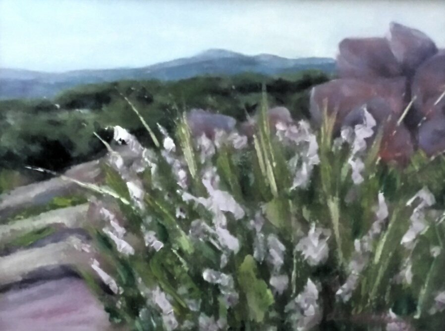 """FREDRICKSBURG AREA WILDFLOWERS"" original fine art by Tracy Wilkerson"