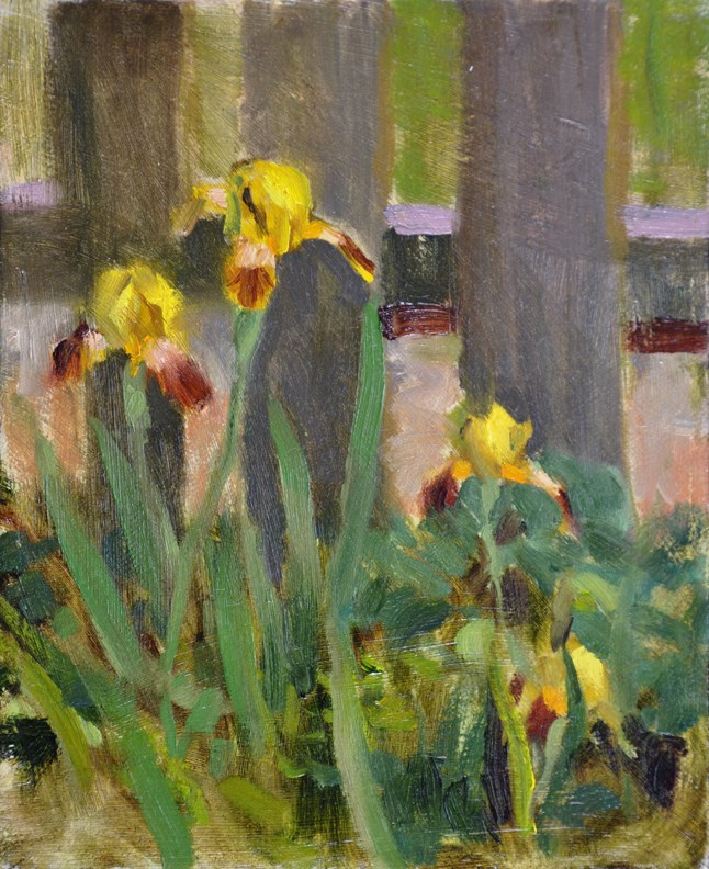 """Yellow Iris"" original fine art by Scott Harding"