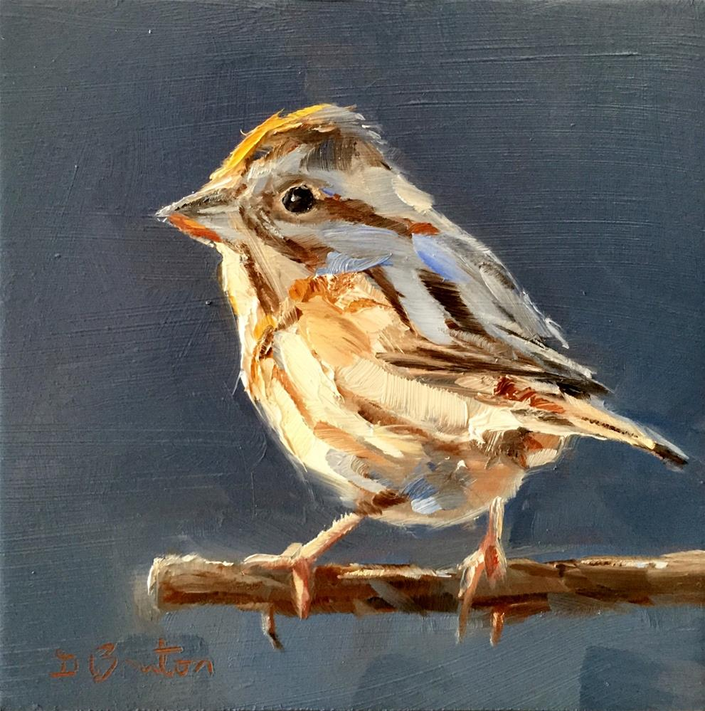 """Song Sparrow"" original fine art by Gary Bruton"