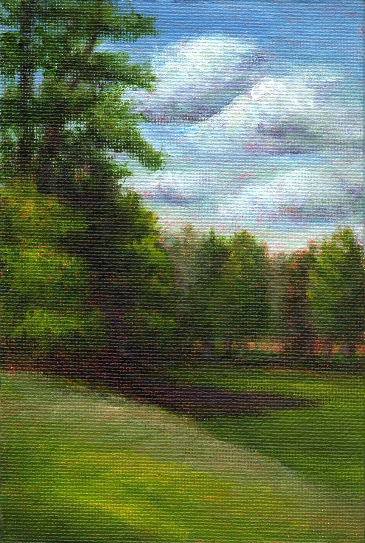 """Haynes Field"" original fine art by Debbie Shirley"
