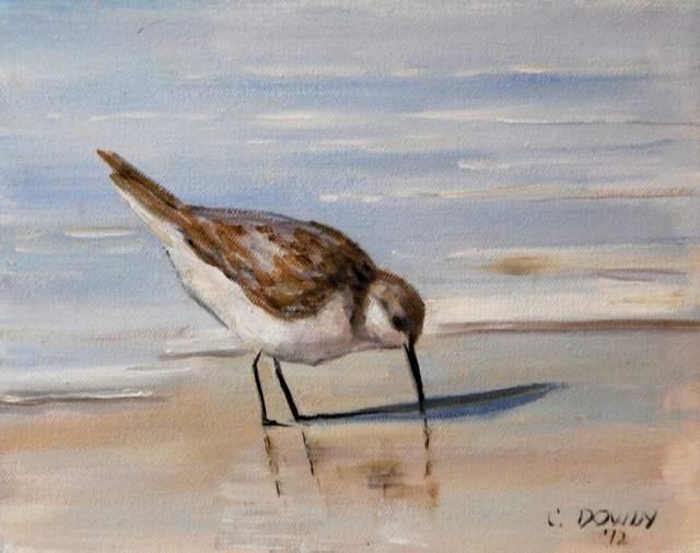 """Seabird Series III"" original fine art by Christina Dowdy"