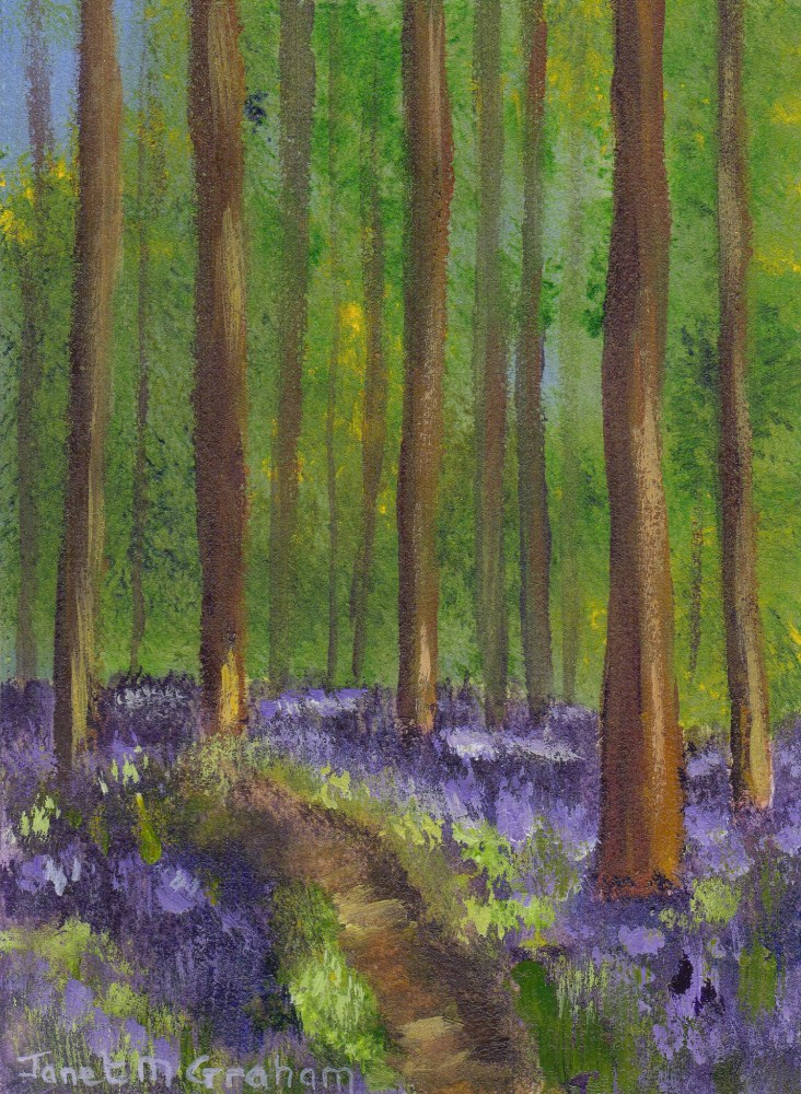 """Bluebell Woods ACEO"" original fine art by Janet Graham"