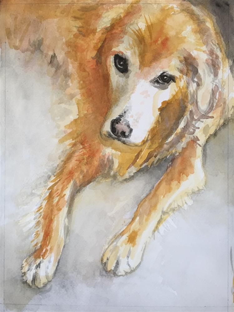 """Dash, from above"" original fine art by Cindy McDonough"