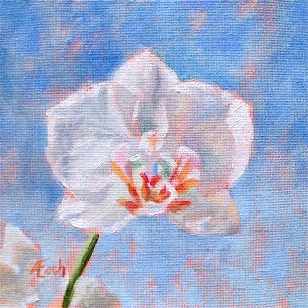 """White Orchid"" original fine art by Audra Esch"