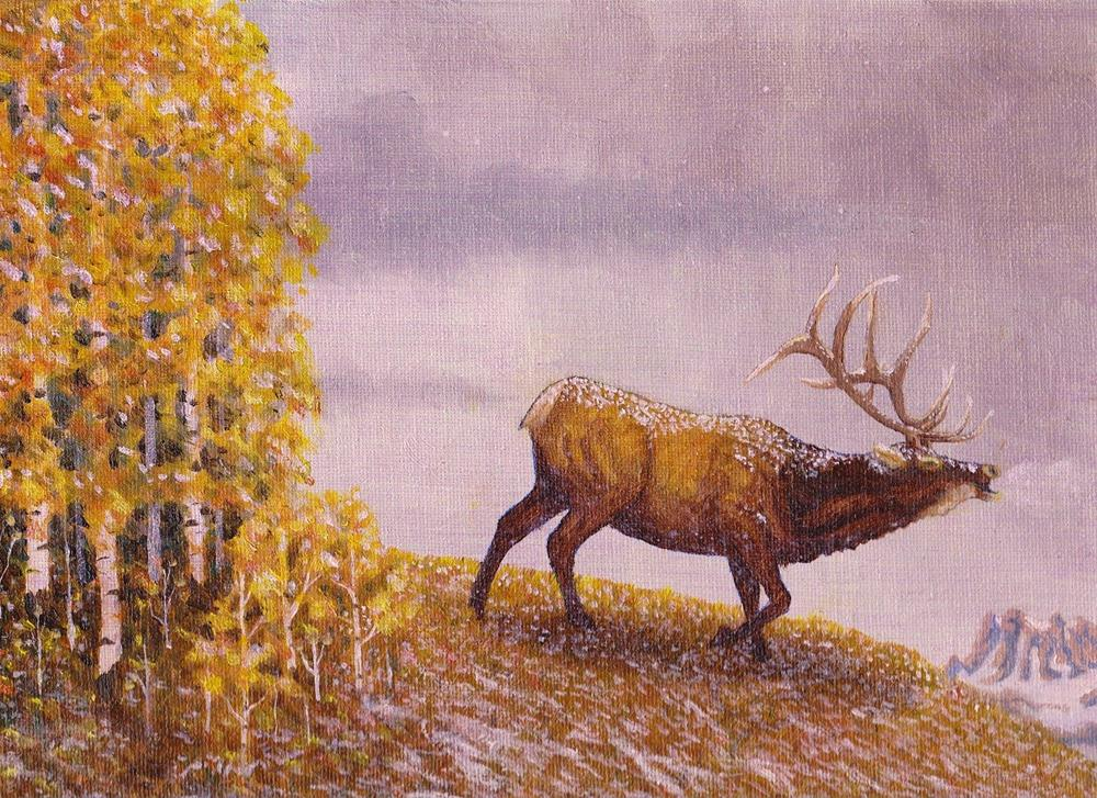 """Bull Elk"" original fine art by William W. Hoyt"