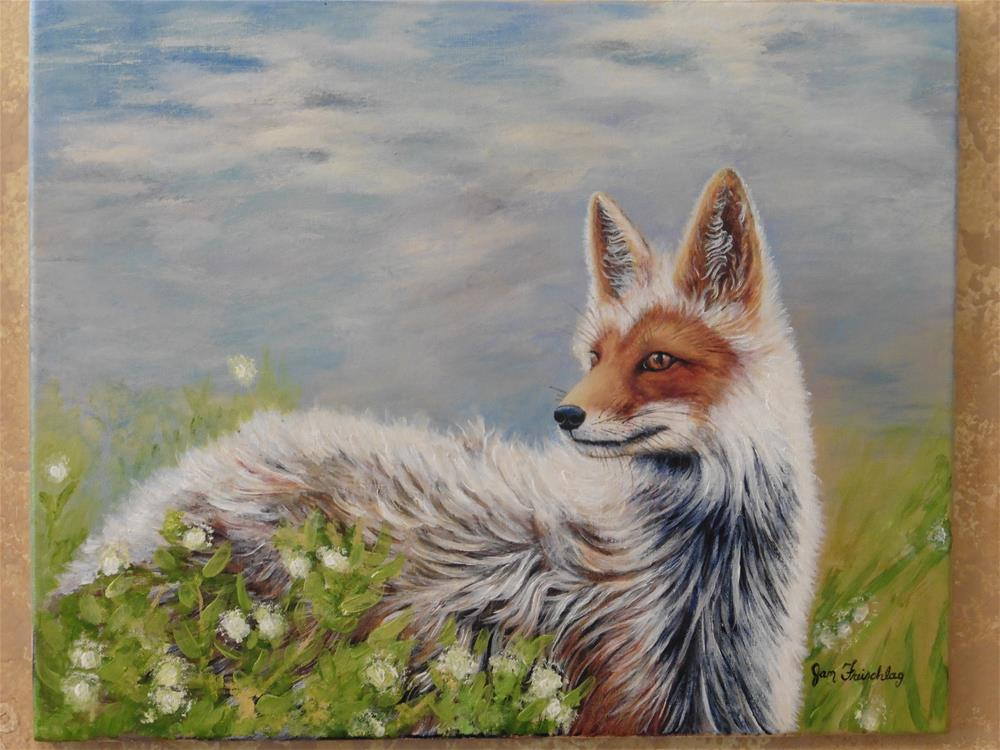 """Artic Fox"" original fine art by Janice Freischlag"