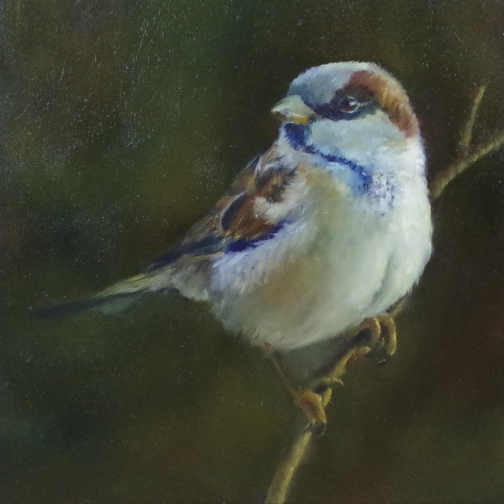 """Little Sparrow"" original fine art by Marilyn R. Place"