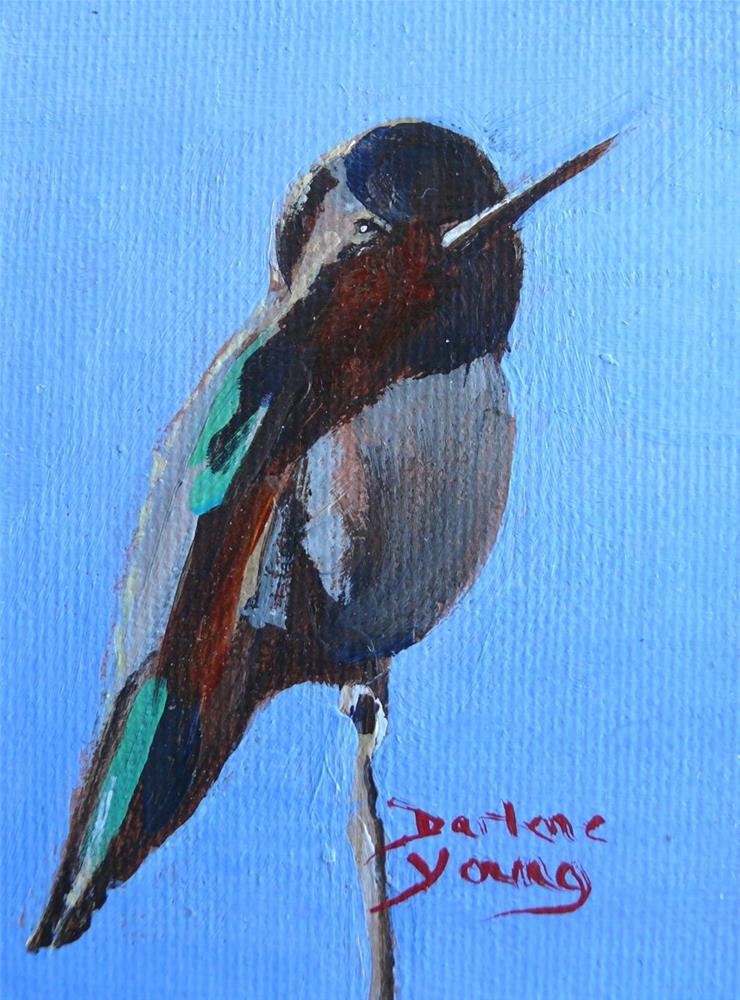"""867 Anna's Humming Bird, oil on board, 2.5 x 3.5"" original fine art by Darlene Young"