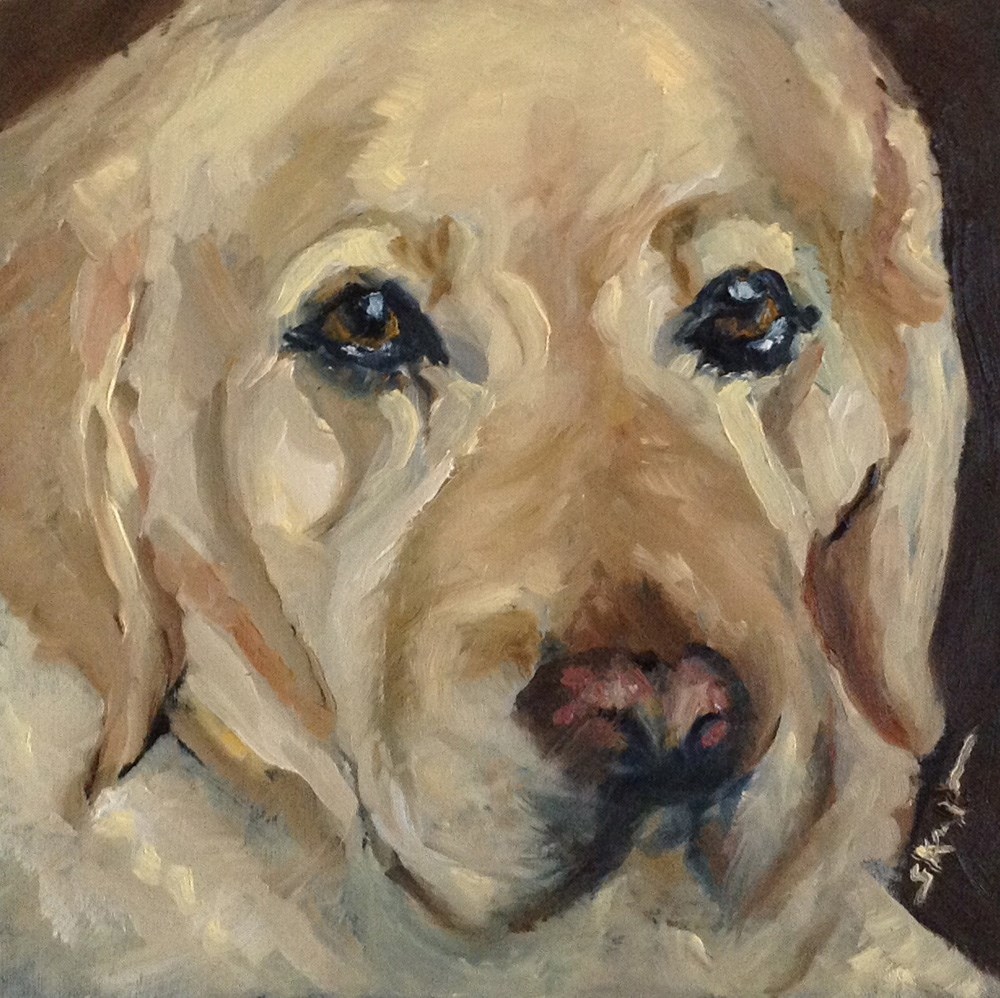 """Soulful Eyes"" original fine art by Shelley Koopmann"