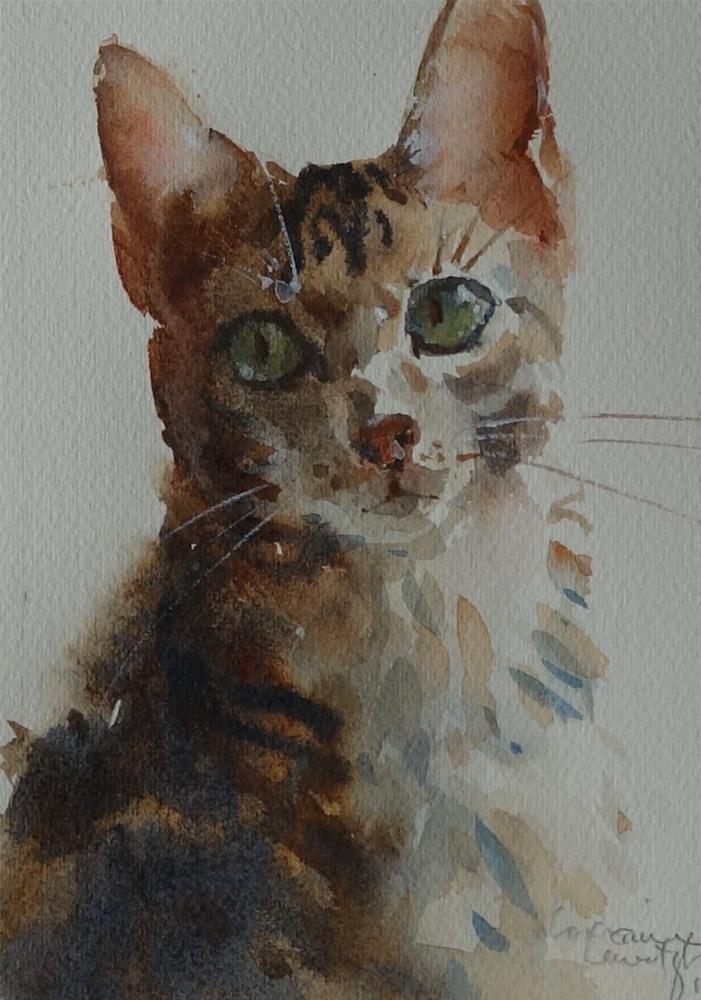 """""""Handsome Cat"""" original fine art by Lorraine Lewitzka"""