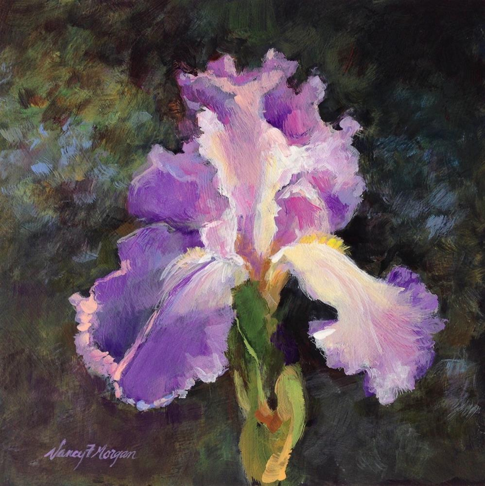 """Dark Iris"" original fine art by Nancy F. Morgan"