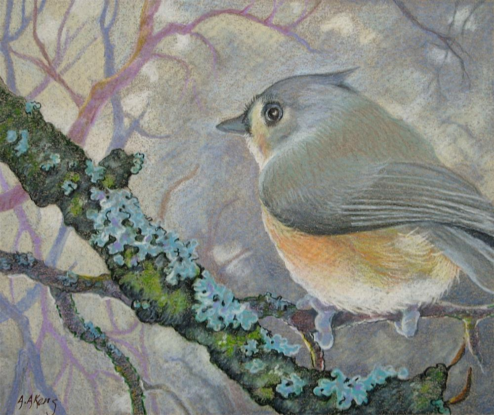 """""""Tufted Titmouse in Winter Bird Study"""" original fine art by Alida Akers"""