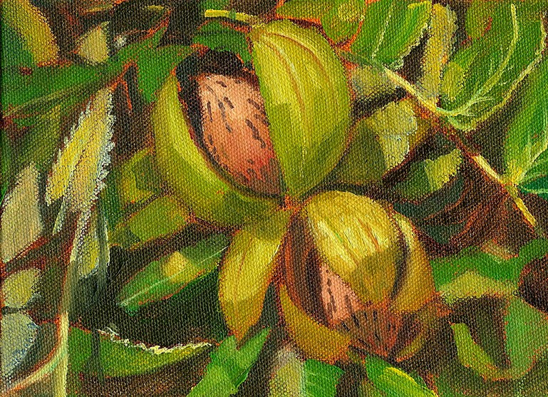 """Tennessee Pecans"" original fine art by Jeff Atnip"