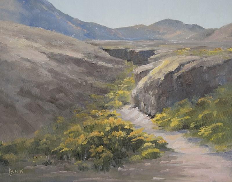 """Flowering Arroyo"" original fine art by Bonnie Bowne"