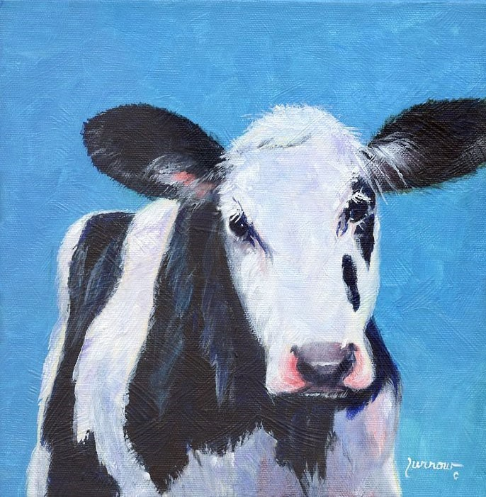 """Cow dressed in Turquoise"" original fine art by Sue Furrow"