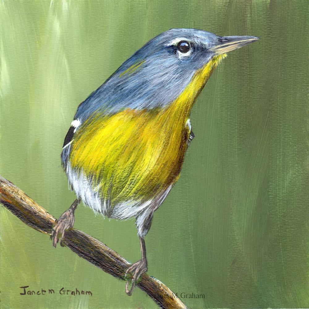 """Northern Parula No 2"" original fine art by Janet Graham"