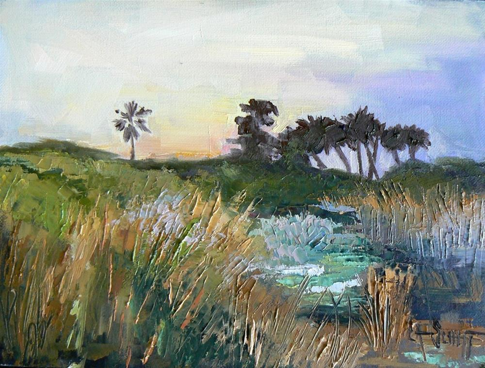 """Small Florida Landscape, Wetlands View, 6x8 Original Oil Daily Painting"" original fine art by Carol Schiff"