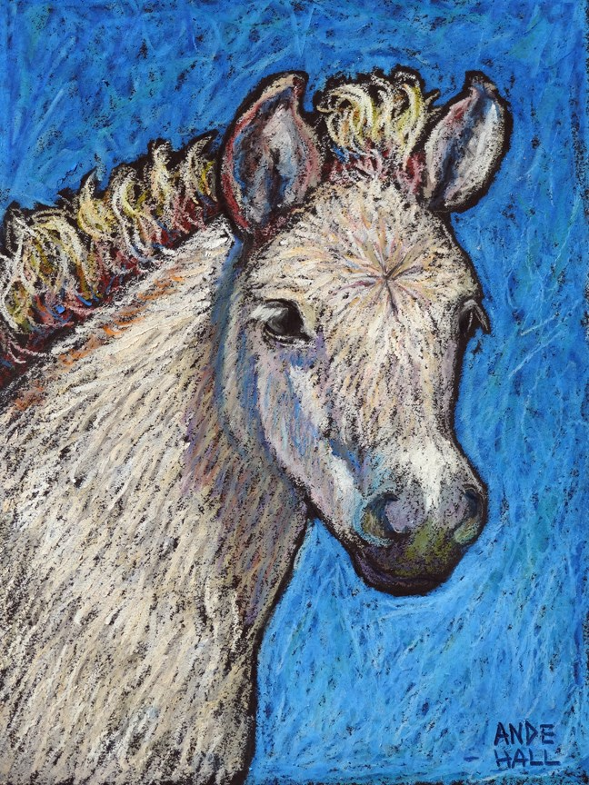 """Norwegian Fjord Foal"" original fine art by Ande Hall"
