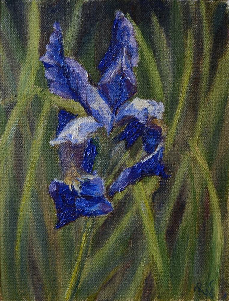 """Iris"" original fine art by Rachel Steely"