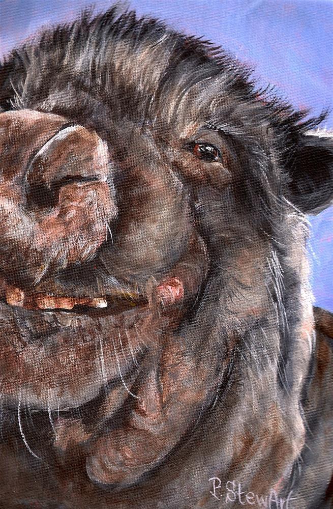 """Hercules 9 x 12 Acrylic on Canvas Board, Pot Bellied Pig Portrait Painting"" original fine art by Penny Lee StewArt"