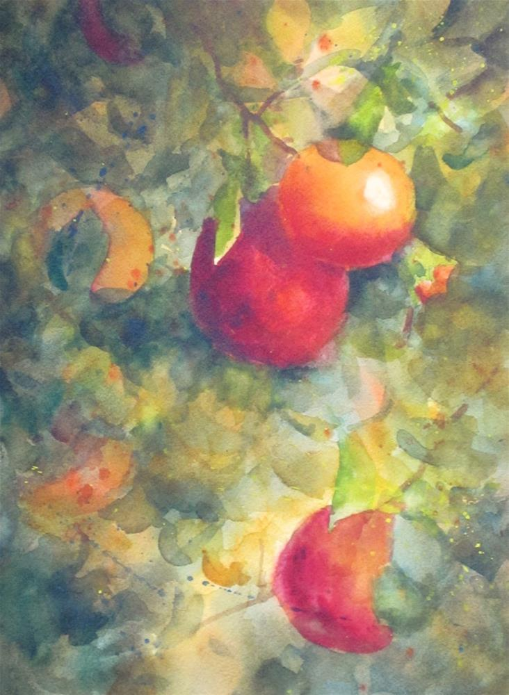 """Pomegranates in the Sun"" original fine art by Pat Fiorello"