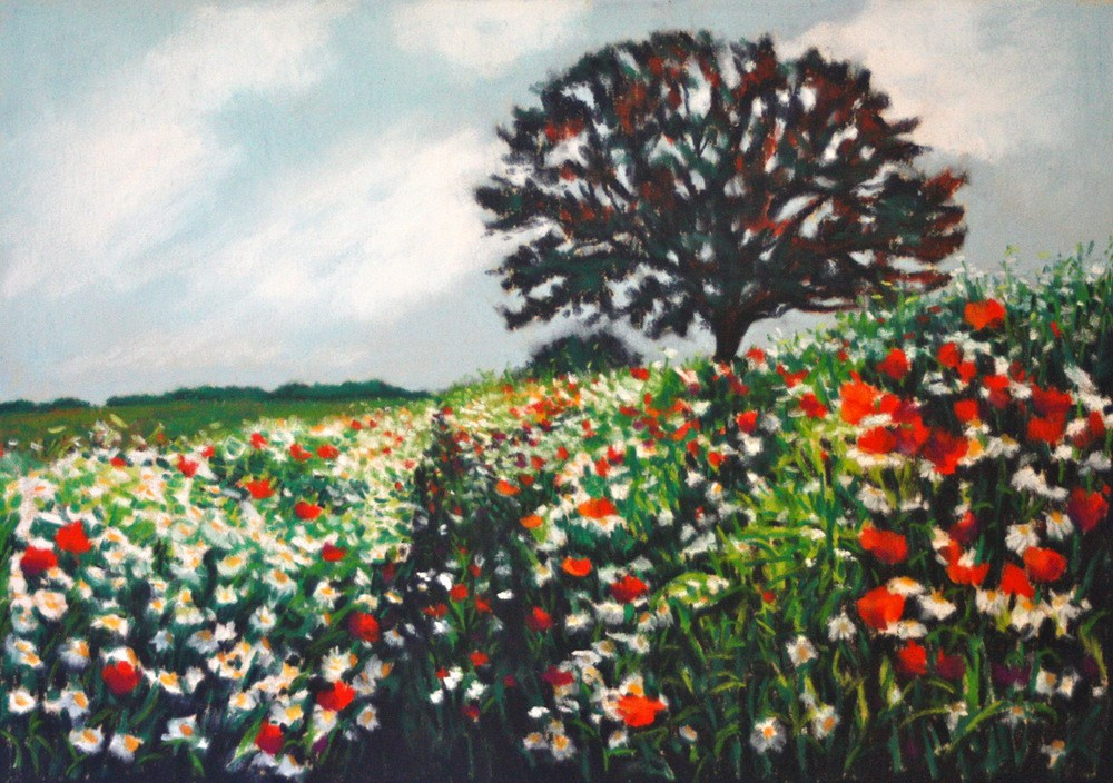 """Summer Dreams"" original fine art by Jill Bates"