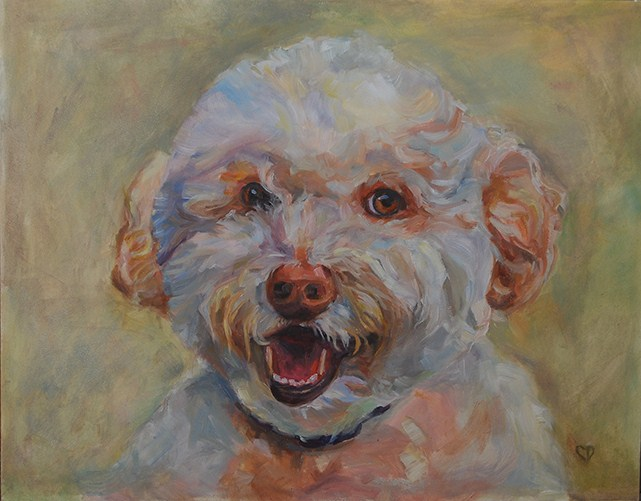 """Jackson - Golden Doodle"" original fine art by Carol DeMumbrum"