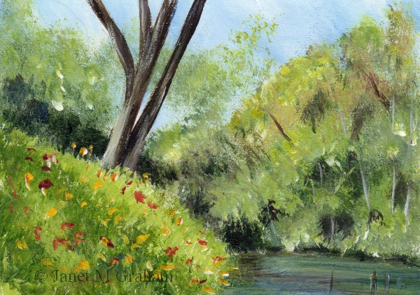 """River Bank ACEO"" original fine art by Janet Graham"