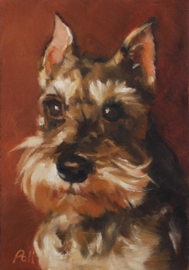 """Scotty Portrait"" original fine art by Pamela Poll"