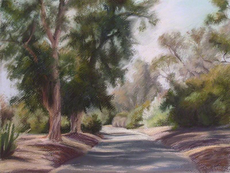 """Eucalyptus, Los Angeles Arboretum"" original fine art by Susan Z. Forbush"
