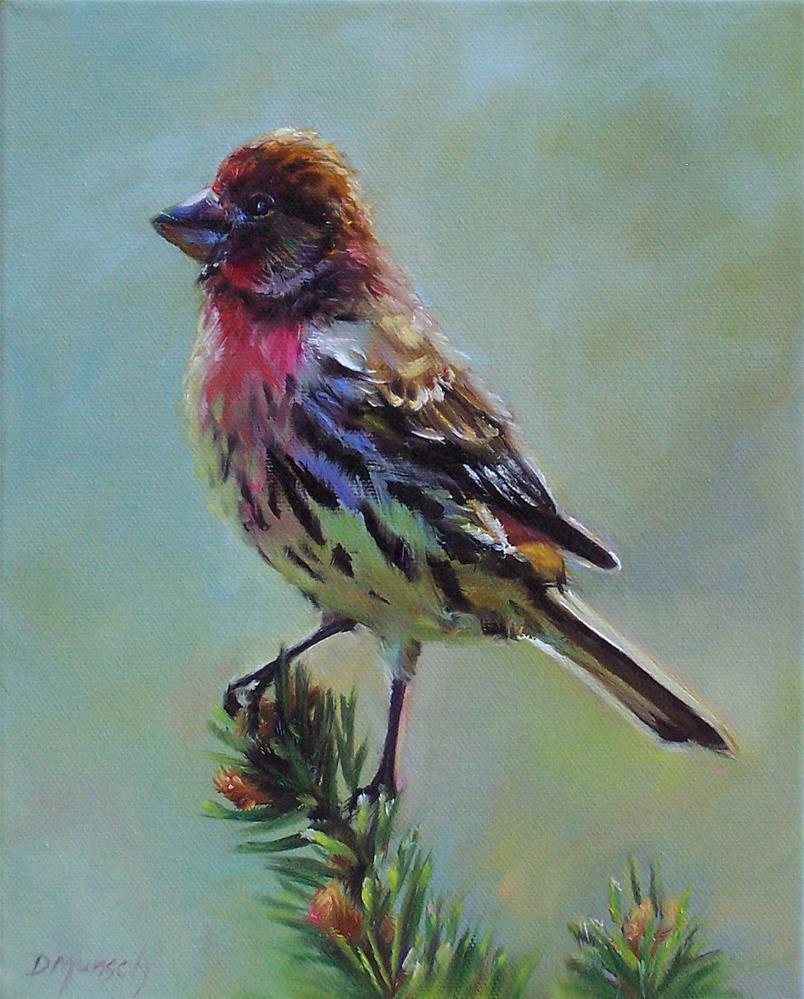 """""""House Finch"""" original fine art by Donna Munsch"""