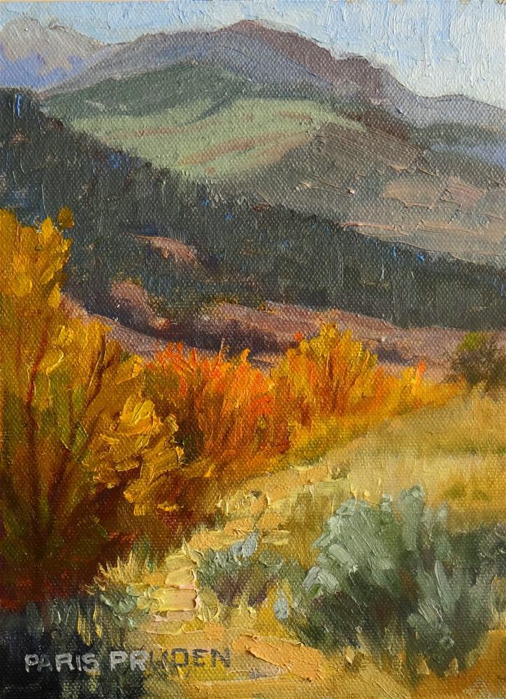"""Torrey Canyon, Wyoming"" original fine art by Nancy Paris Pruden"