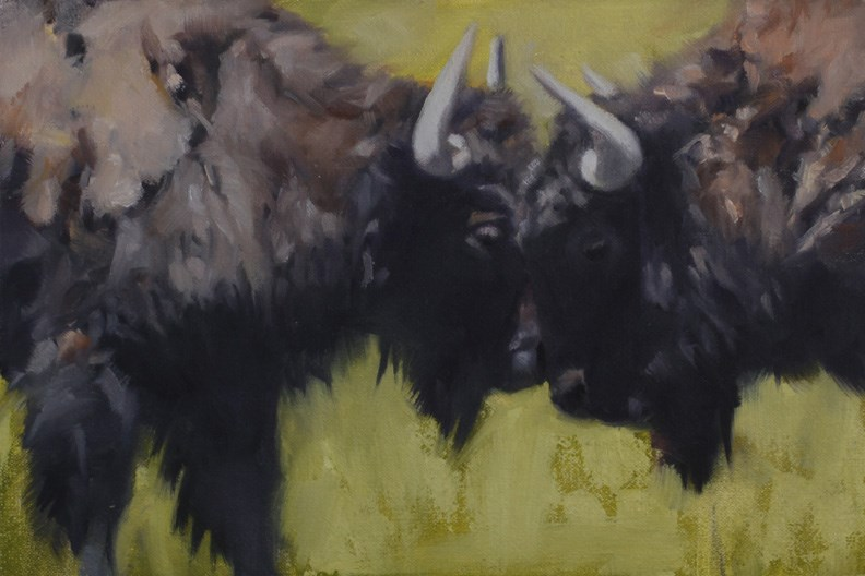 """Bison Faceoff (framed)"" original fine art by Pamela Poll"