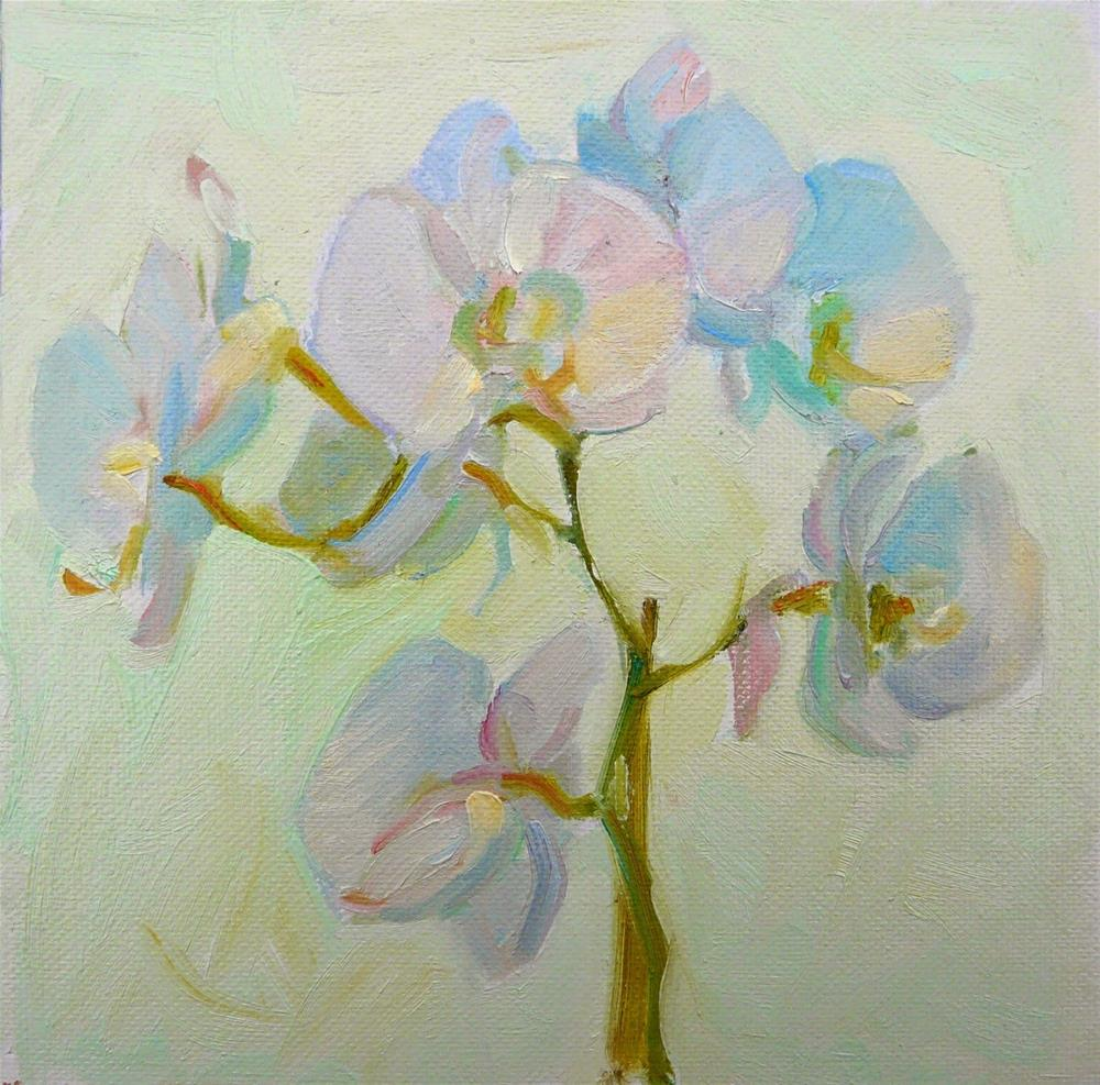 """Orchids,still life,oil on canvas,8x8,price$200"" original fine art by Joy Olney"