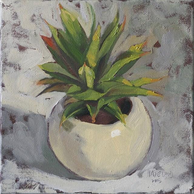 """Potted Succulent I"" original fine art by Haze Long"
