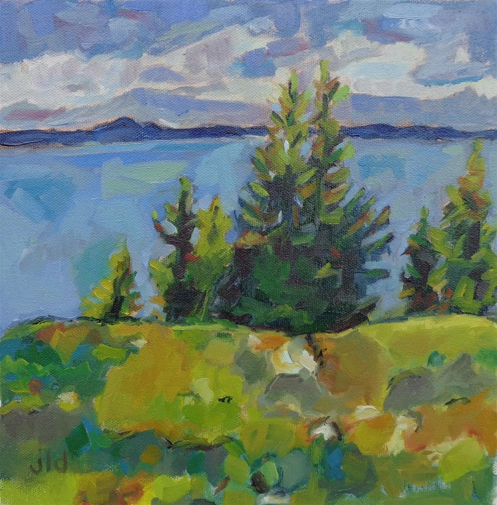 """OVERLOOKING SALTSPRING"" original fine art by Jean Delaney"