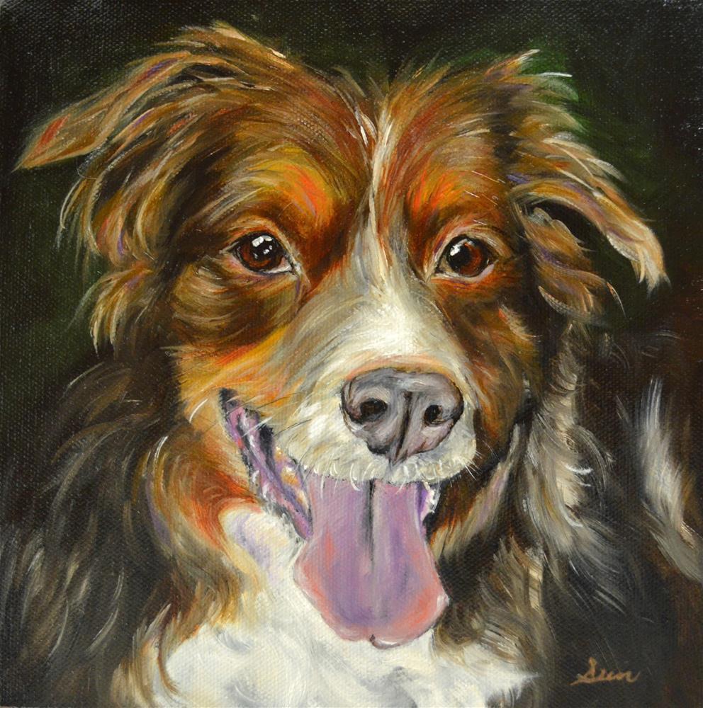 """""""Australian Shepherd"""" original fine art by Sun Sohovich"""