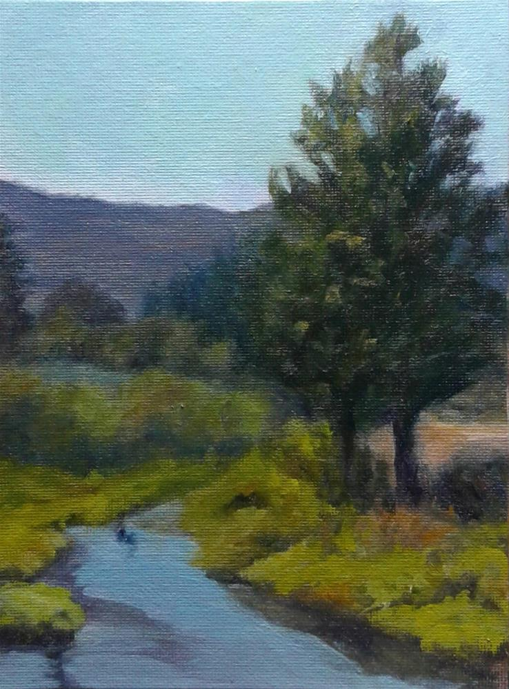 """A Stream Runs Through It"" original fine art by Candi Hogan"