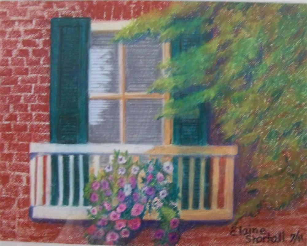 """Washington Street Windowbox"" original fine art by Elaine Shortall"