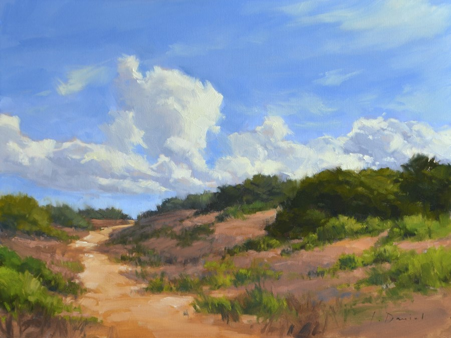 """Dune Walk - Anderson Gallery Exhibit"" original fine art by Laurel Daniel"