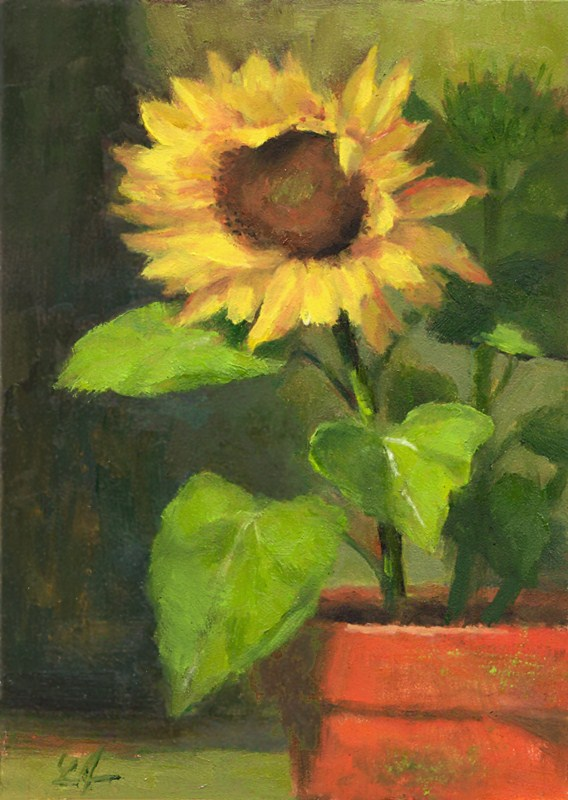 """Sunflower"" original fine art by Linda Jacobus"
