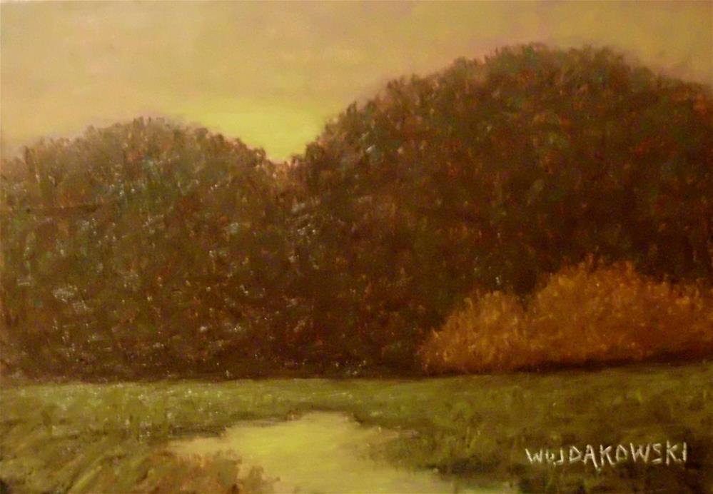 """Peaceful evening"" original fine art by Joe Wojdakowski"
